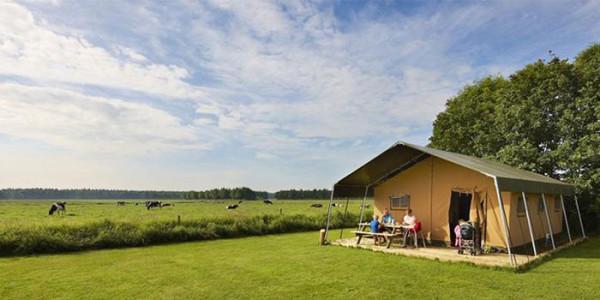Met een luxe safaritent, glamping in Friesland ervaren tijdens kamperen bij de boer. vakantiesvoorgrotegezinnen.nl