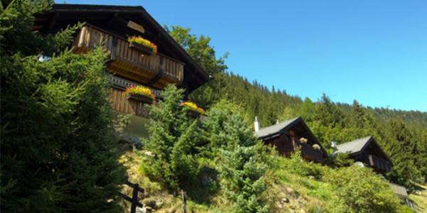 Vakantiechalet voor grote gezinnen met 6 personen aan de bosrand in Blatten, Zwitserland. Gelegen in een UNESCO Werelderfgoed gebied.