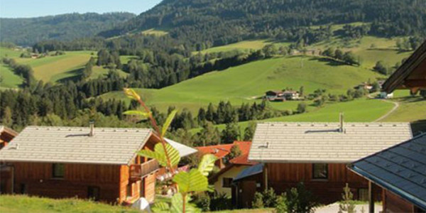 Vrijstaande houten vakantiebungalow op familiepark in Oostenrijk, voor grote gezinnen met 6 personen. Ook 6 persoons vakantiehuizen beschikbaar.