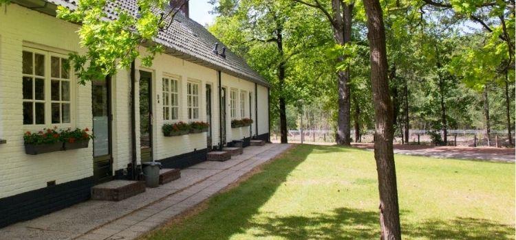 Geschakeld vakantiehuis voor 8 personen in het bos in Gelderland